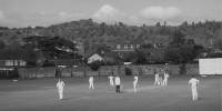 Batfast Cricket Clubs
