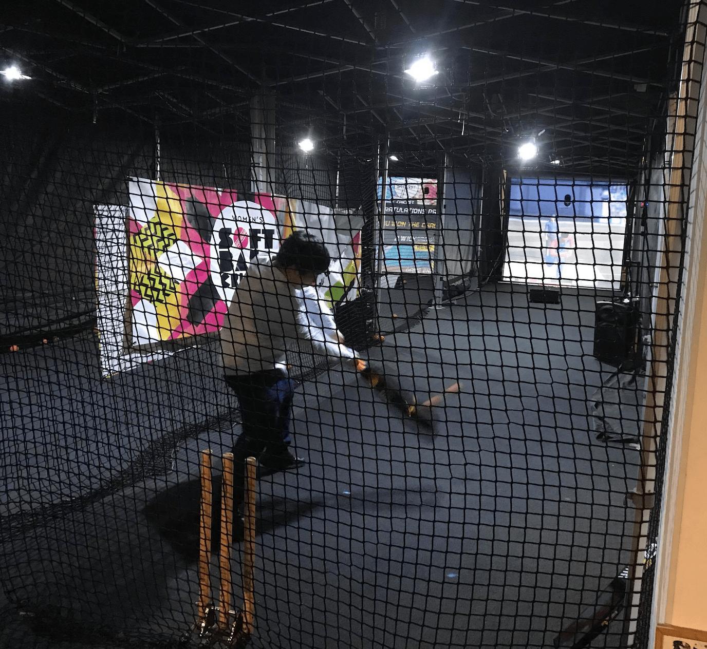 Batting Simulator Science Museum